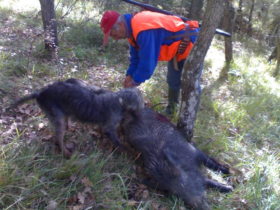 Caccia in Abruzzo, accolto ricorso WWF. Annullato calendario venatorio