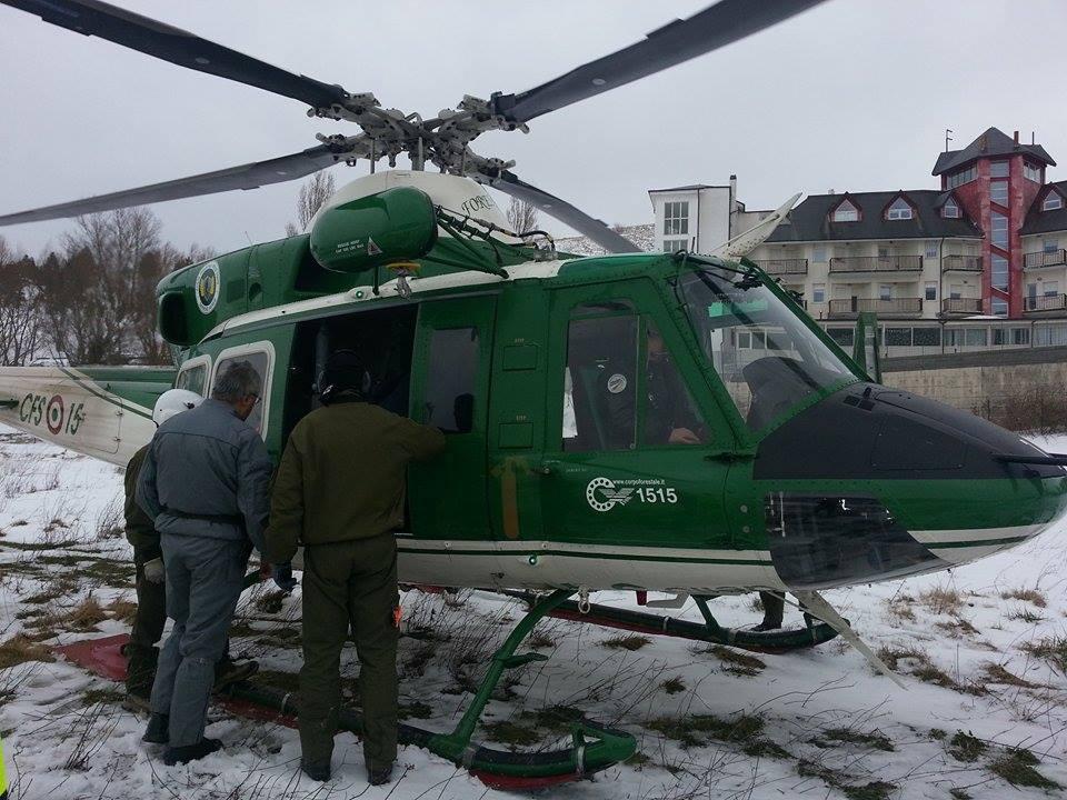 L Elicottero Arra Pdf : Animali bloccati in quota e senza foraggio interviene l