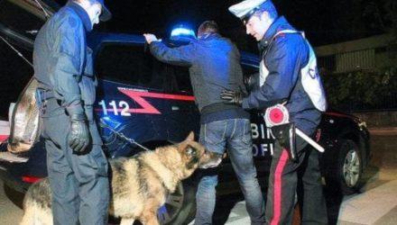 cane-carabinieri-notte-2