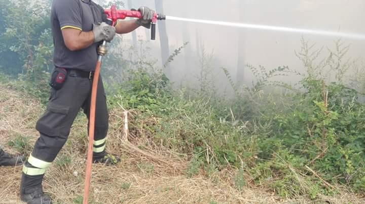 Ferragosto, incendi boschivi: 37 richieste di intervento aereo