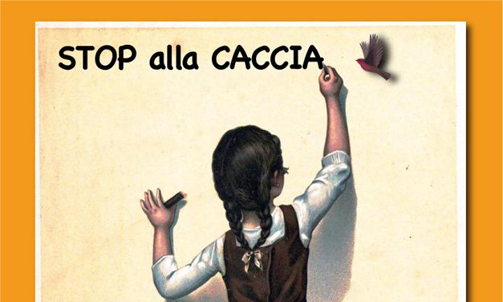 Regione Abruzzo Calendario Venatorio.Caccia Accolto Il Ricorso Del Wwf Il Tar Sospende Il